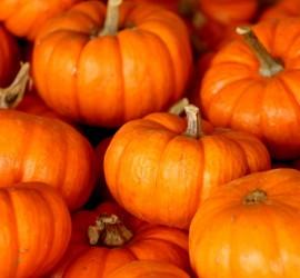 pumpkins-stacked